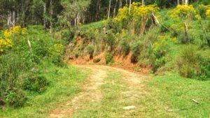 estrada de apoio trilha urubici
